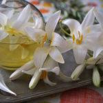 Лічничі настоянки на квітах білої лілії