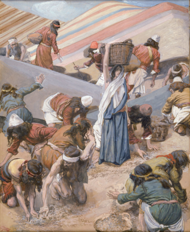 The Gathering of the Manna by James Tissot